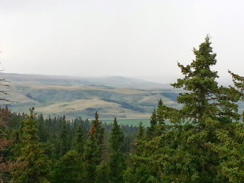 Horseshoe Canyon Viewpoint, Cypress Hills Provincial Park