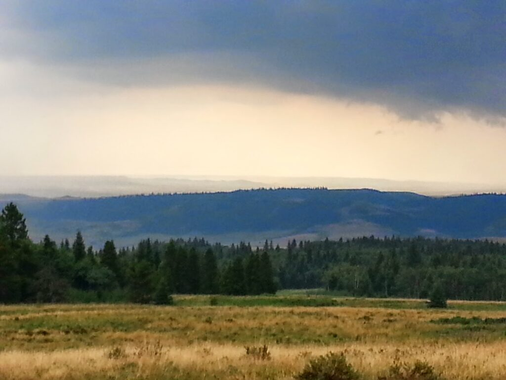 Head of the Mountain Viewpoint, Cypress Hills Provincial Park