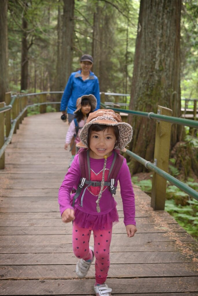 Hemlock Grove Boardwalk, Glacier National Park