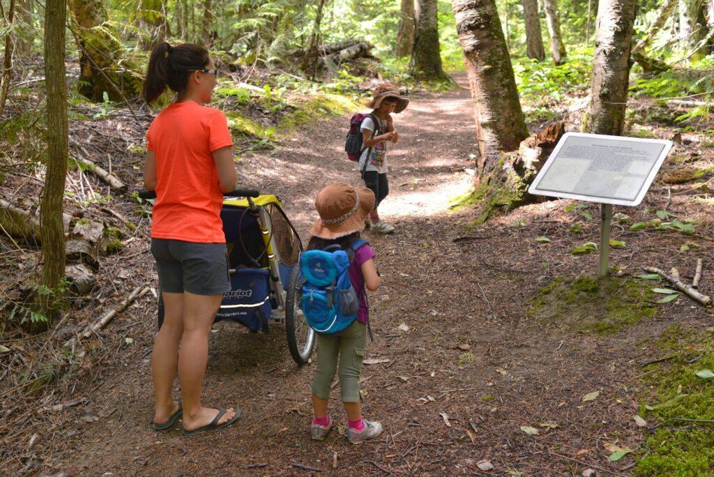 Shuswap Lake Provincial Park Nature Trail