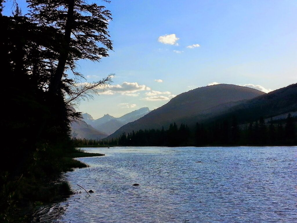 bow-valley-campground
