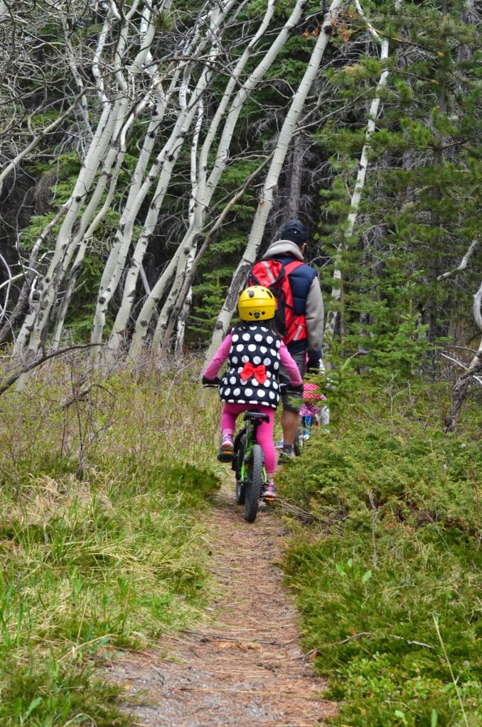 montane-trail-bow-valley-provincial-park 4