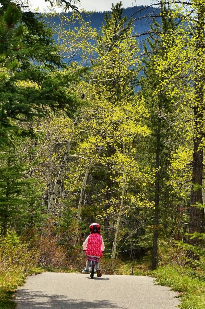 bow-valley-bike-trail