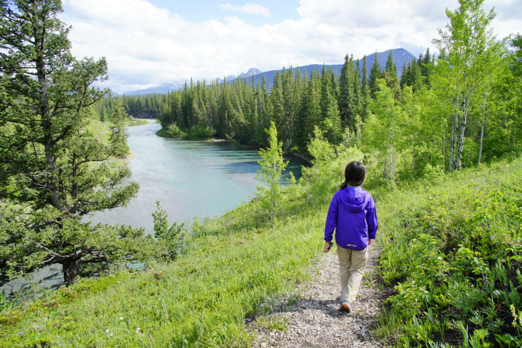 Flowing Water Trail, Bow Valley Provincial Park
