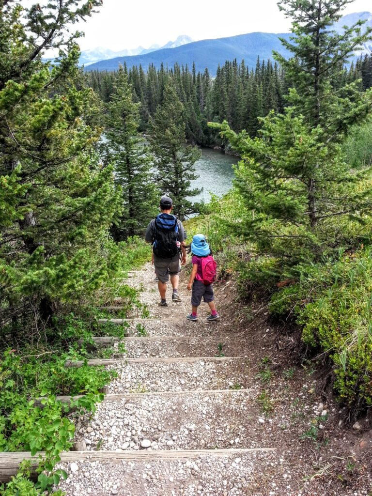 flowing-water-trail-bow-valley-provincial-park 8