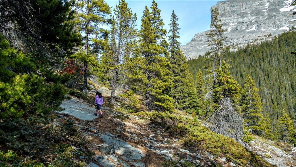 West Wind Pass Trail, Kananaskis