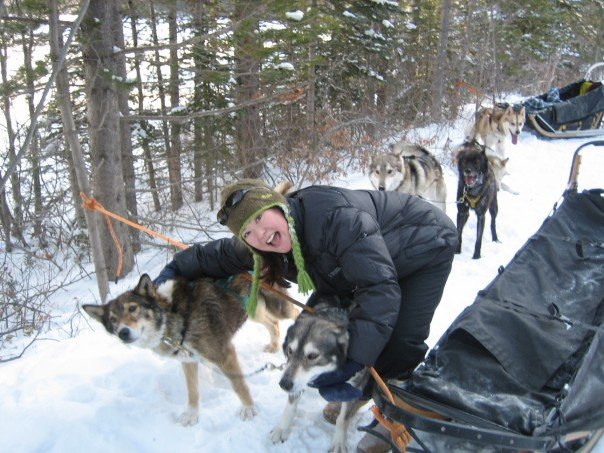 Meeting Snowy Owl's friendly sled dogs