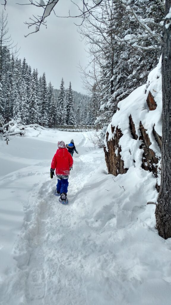 ribbon creek snowshoe trail