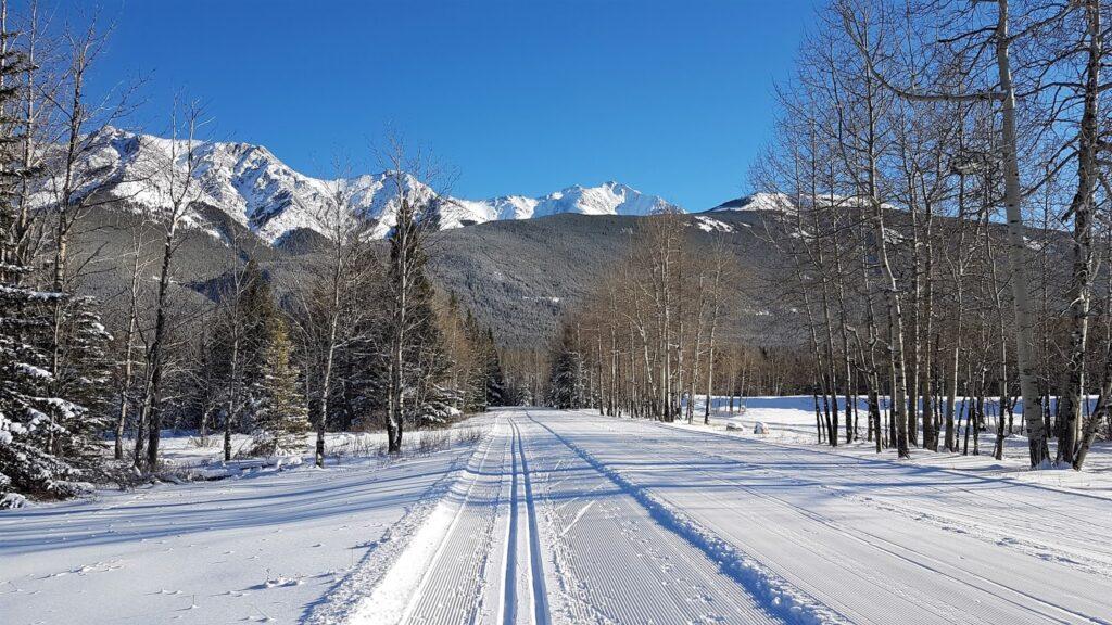 bill-milne-cross-country-ski-trail.jpg