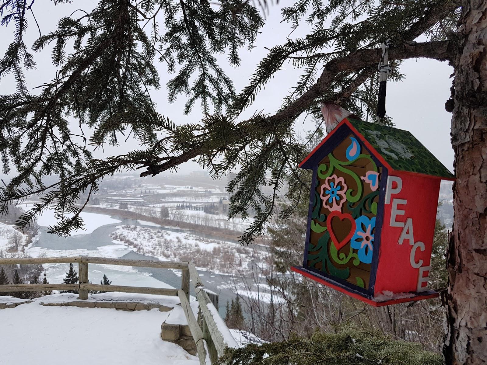 Douglas Fir Trail Lookout, Edworthy Park