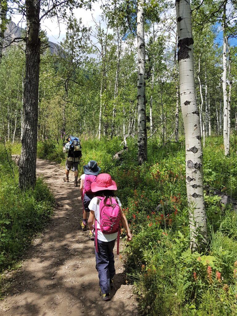 mount-yamnuska-trail