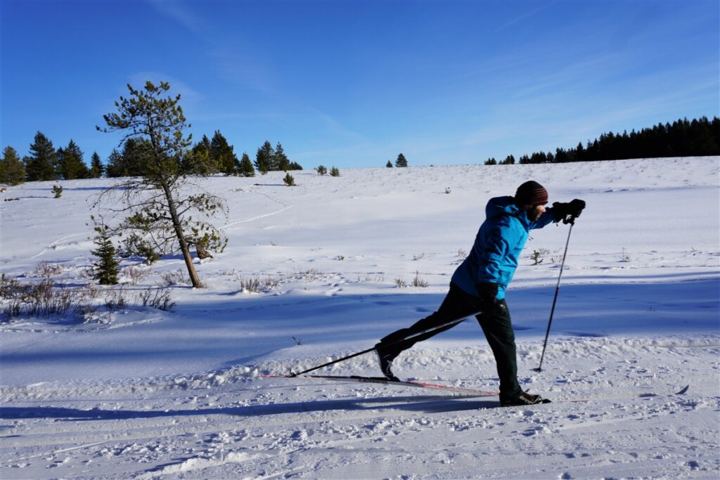 spring-creek-cross-country-ski-cypress-hills