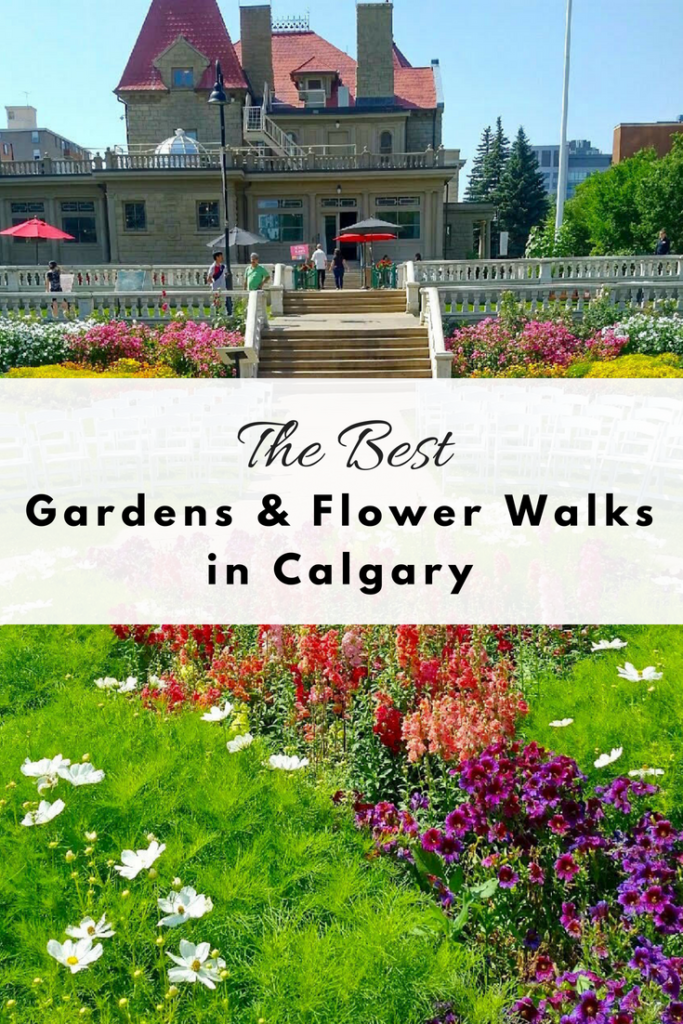 Discover Calgary S Best Gardens And Flower Walks Play Outside Guide
