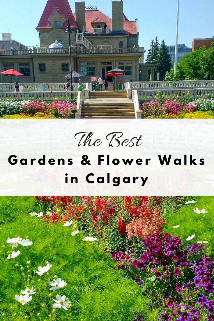 Calgary's best gardens and flower walks