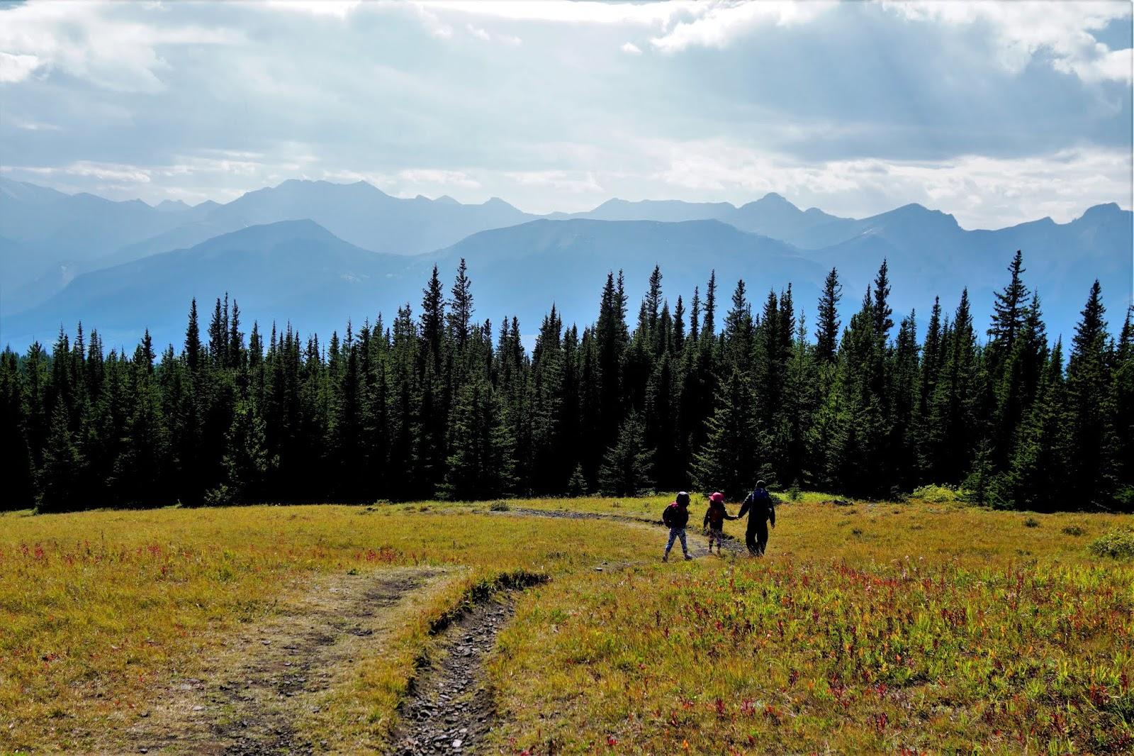 Jumpingpound Summit Trail