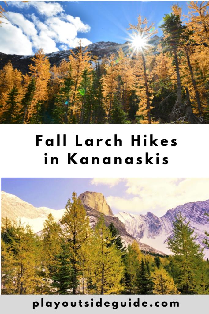 fantastic-fall-larch-hikes-in-kananaskis.png