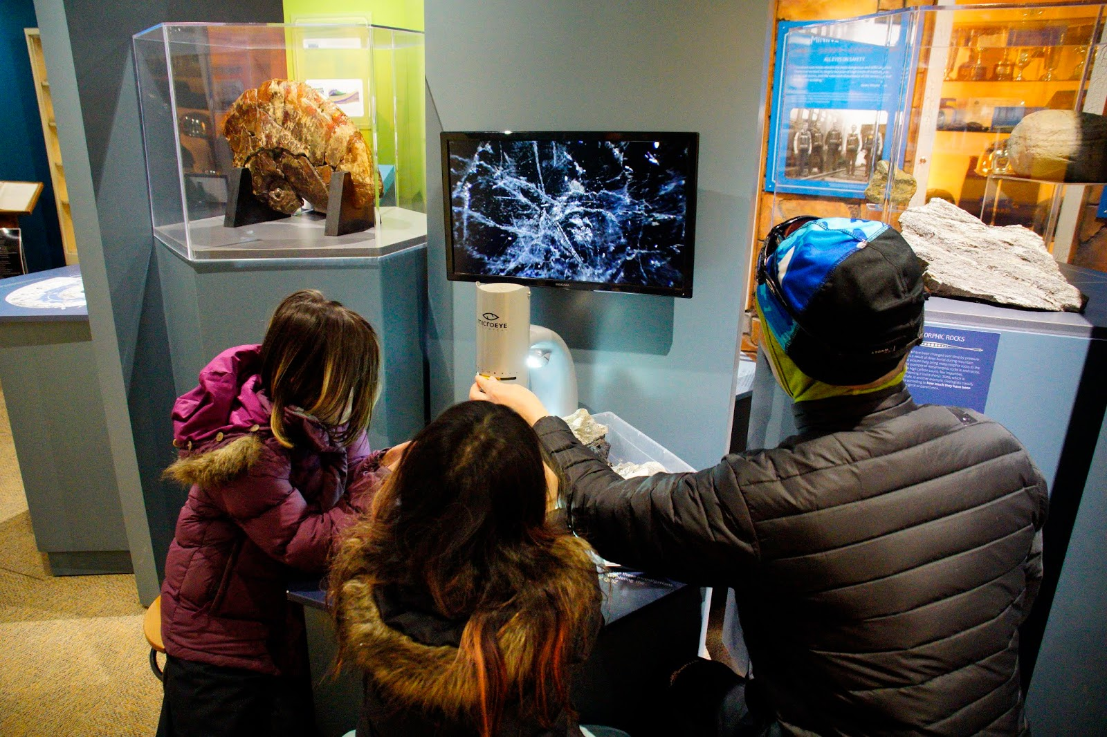 Examining coal under a light scope at Canmore Museum