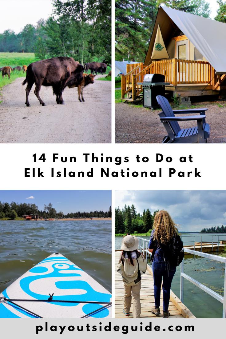 14 fun things to do at Elk Island National Park, Alberta