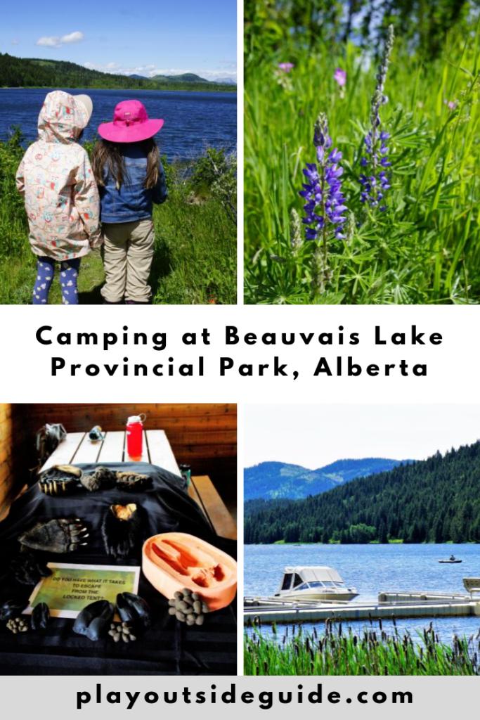 camping-at-beauvais-lake-provincial-park