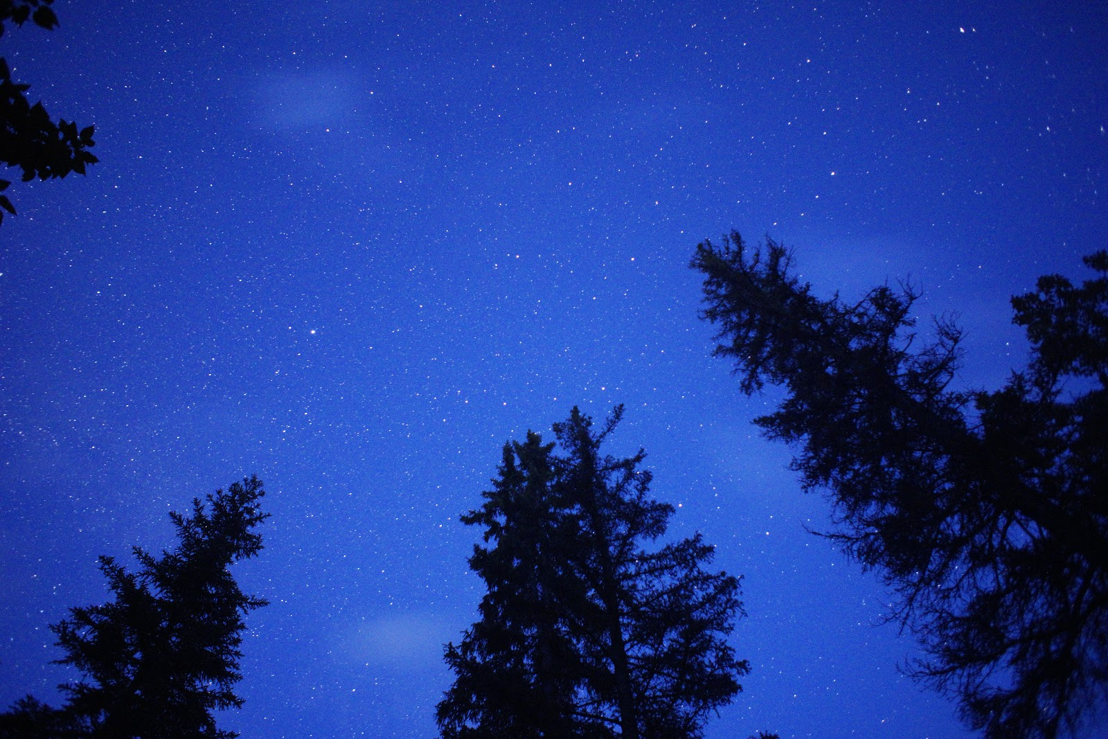 Stargazing at Beauvais Lake Provincial Park
