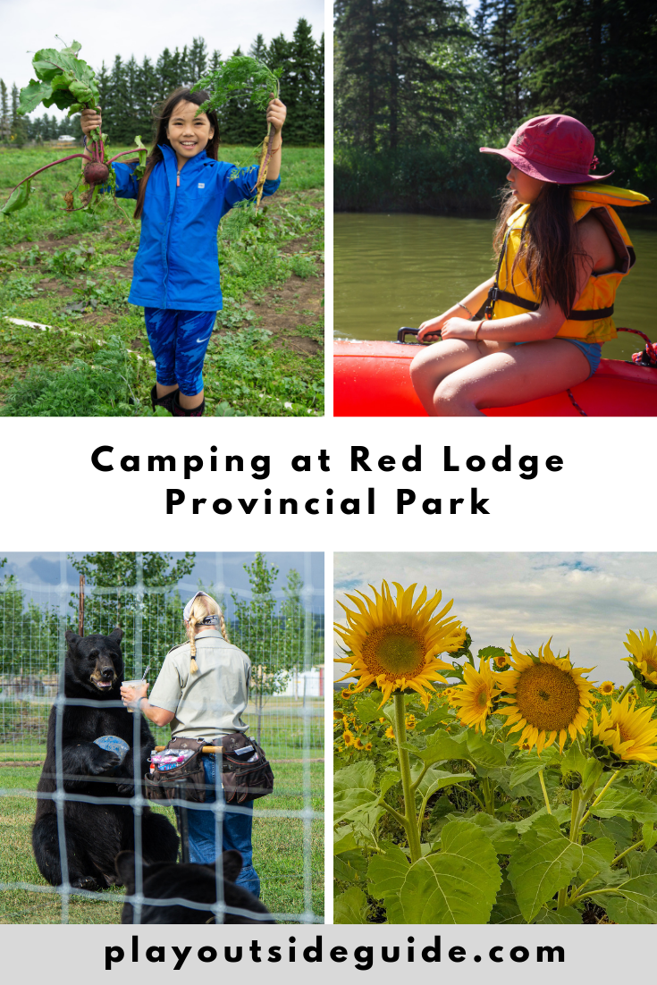 Camping at Red Lodge Provincial Park, Bowden - pinterest pin