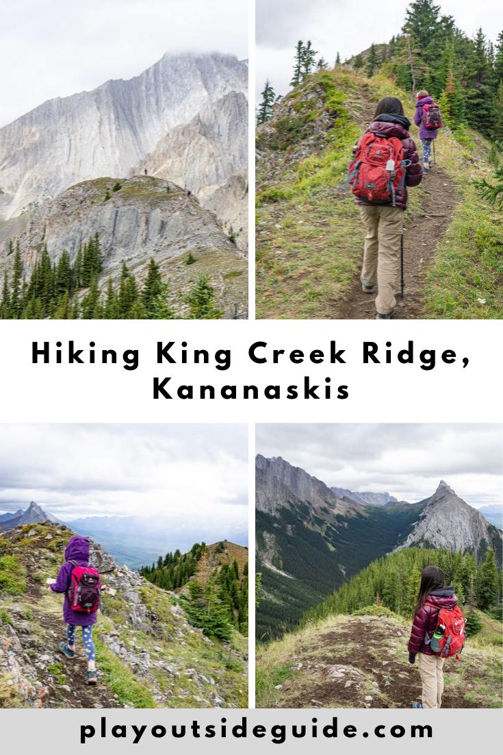 hiking king creek ridge kananaskis pinterest pin