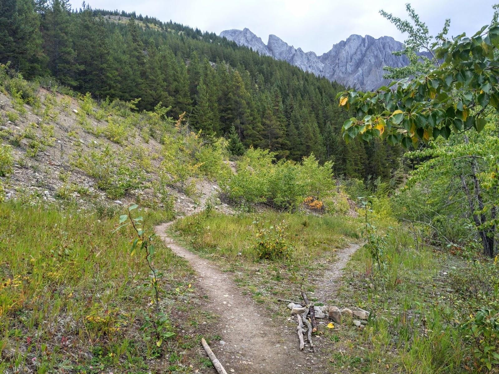 King Creek Ridge Trail