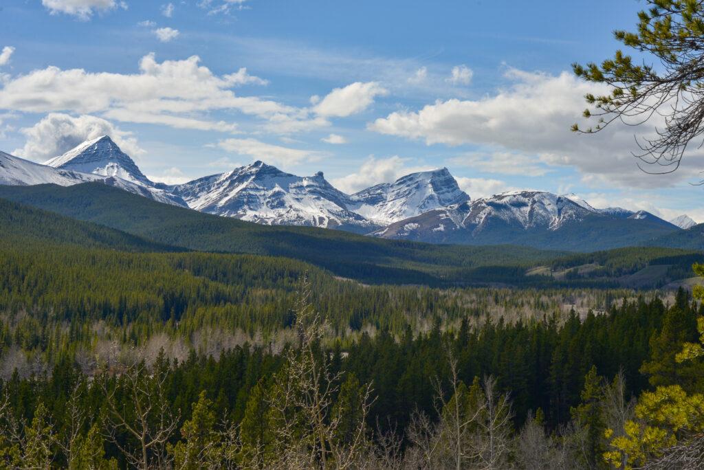 View-from-Cat-Creek-Interpretive-Trail
