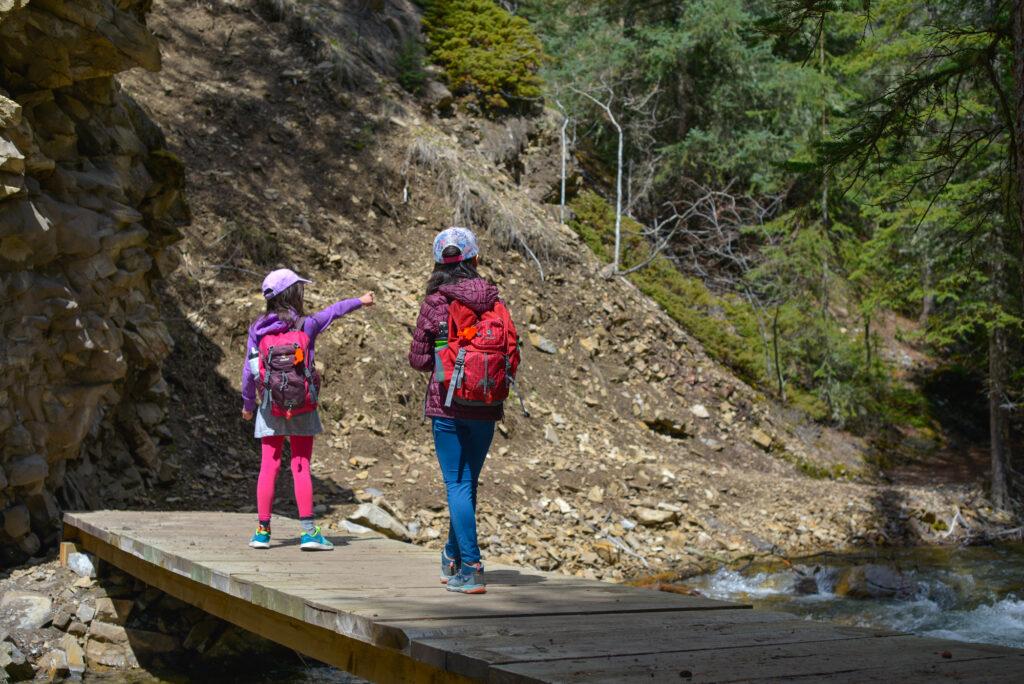 Cat-Creek-Interpretive-Trail-bridge