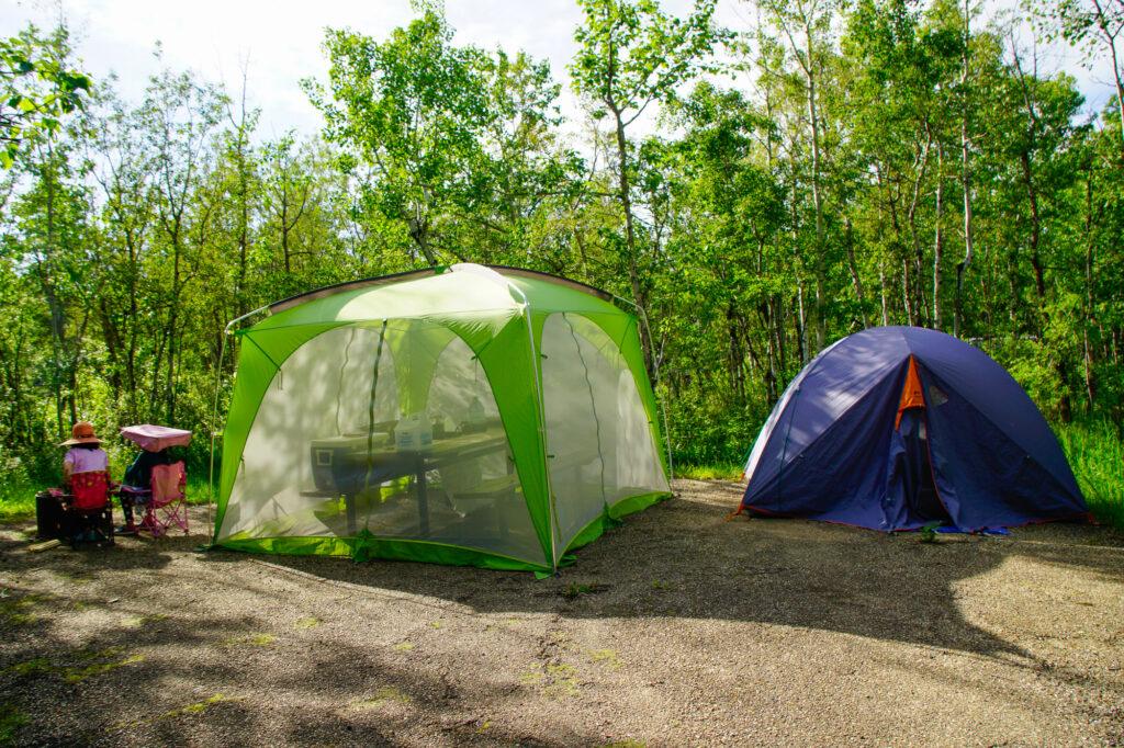 Miquelon Lake Provincial Park Campsite