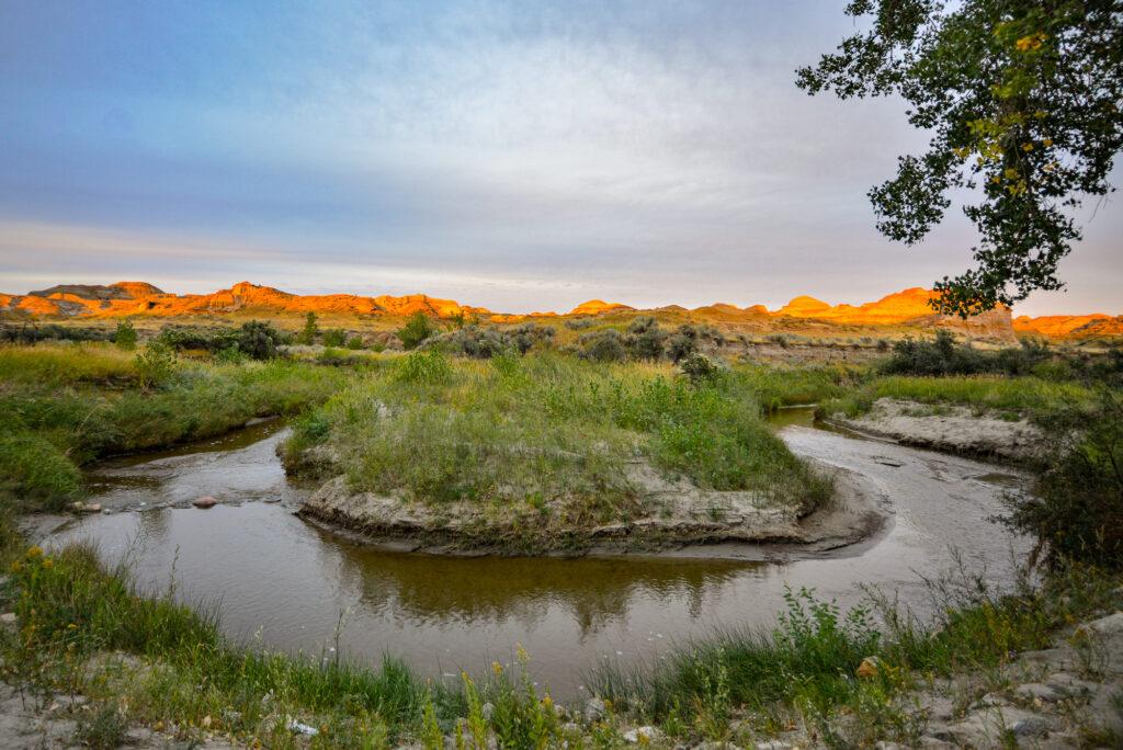 dinosaur-provincial-park-campground