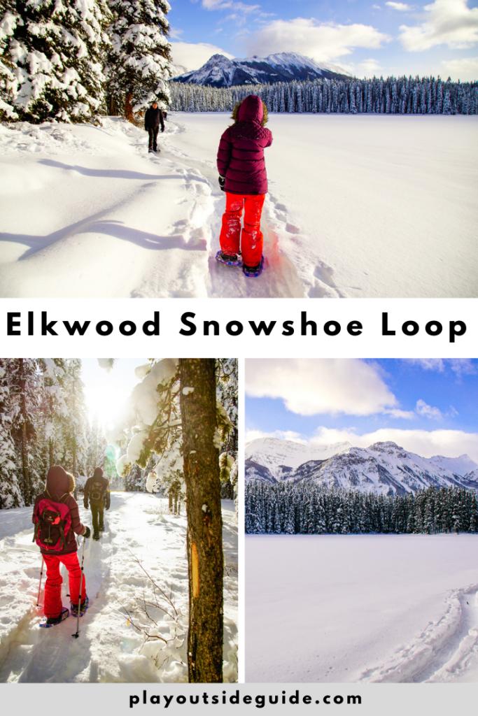 elkwood-loop-snowshoe-trail-kananaskis