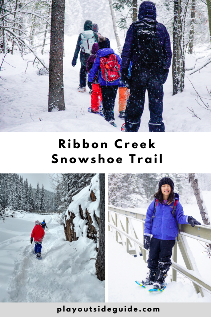 Ribbon-creek-snowshoe-trail-kananaskis-pin