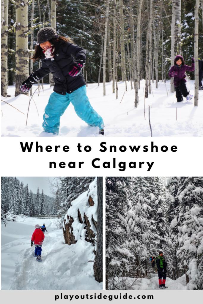 snowshoe-trails-near-calgary