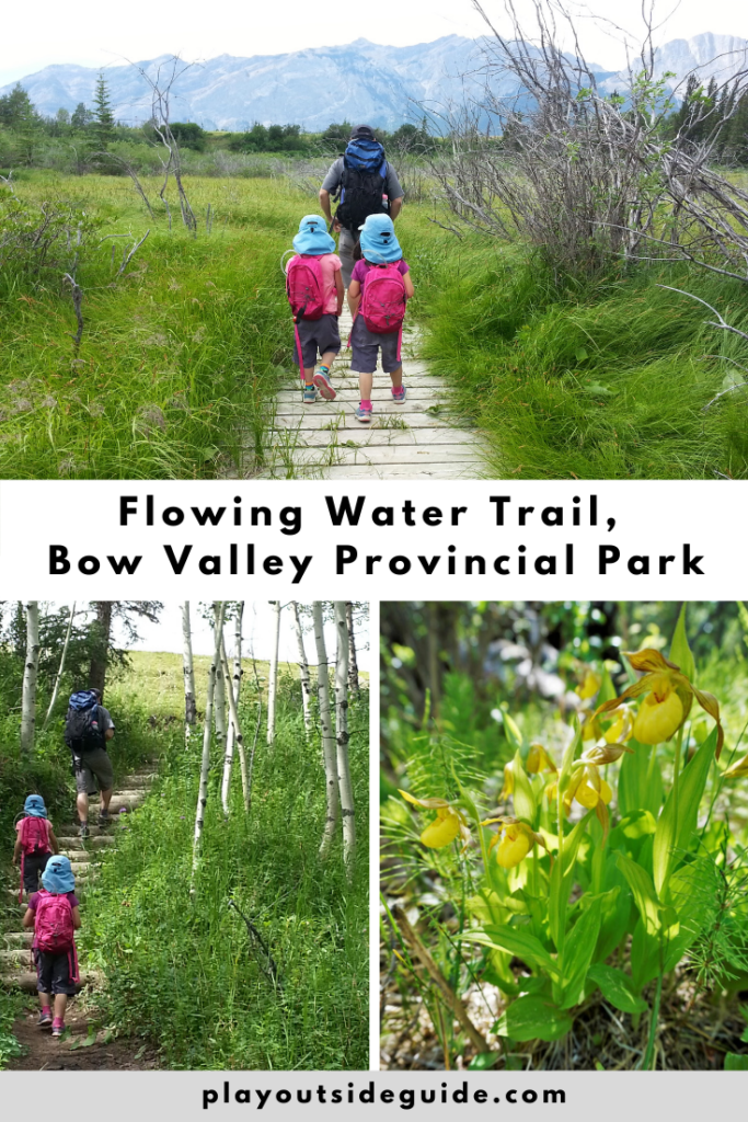 flowing-water-trail-bow-valley-provincial-park
