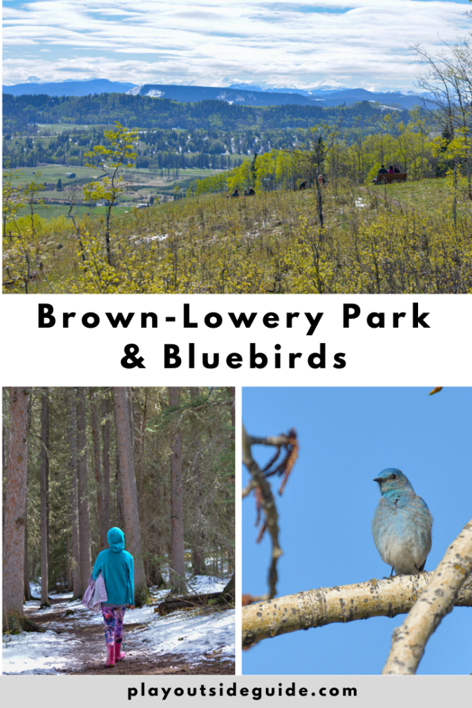 Brown-Lowery Provincial Park and Bluebirds