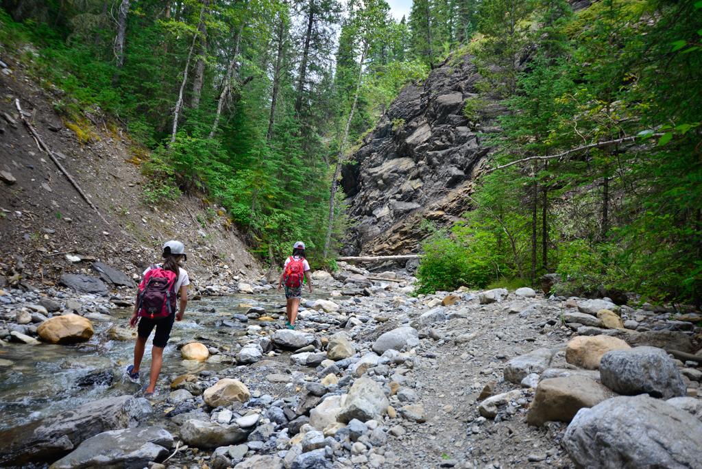 allstones-creek-david-thompson-country-7