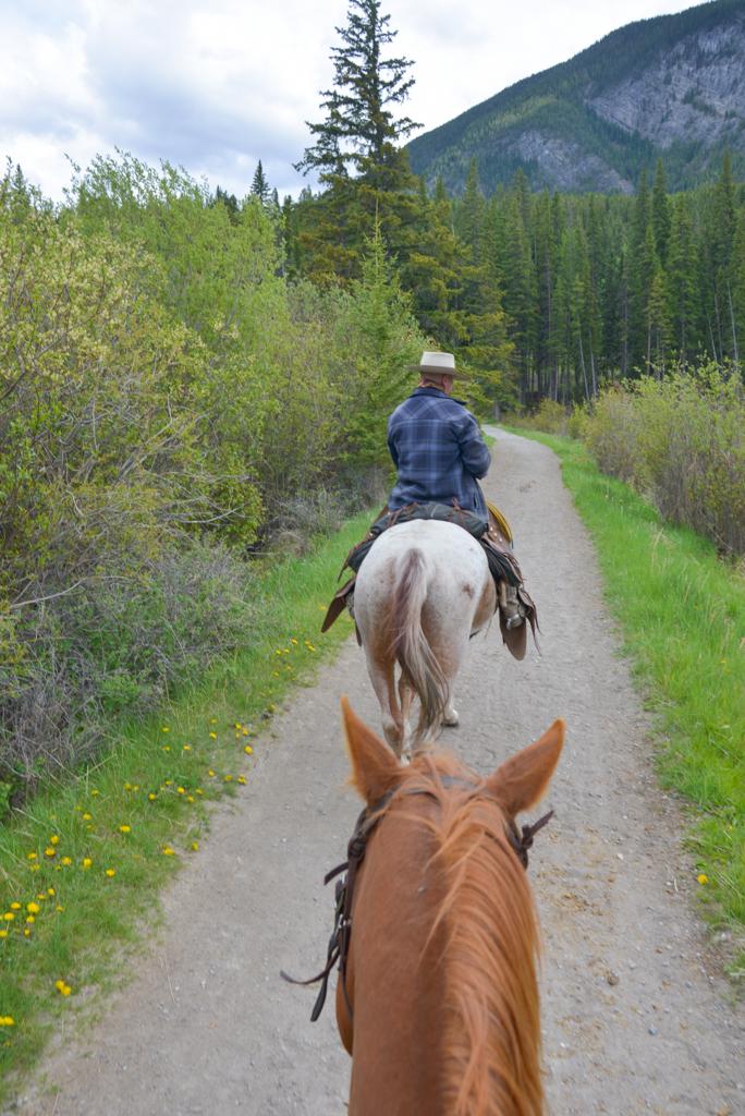 banff-trail-riders-rsz-10