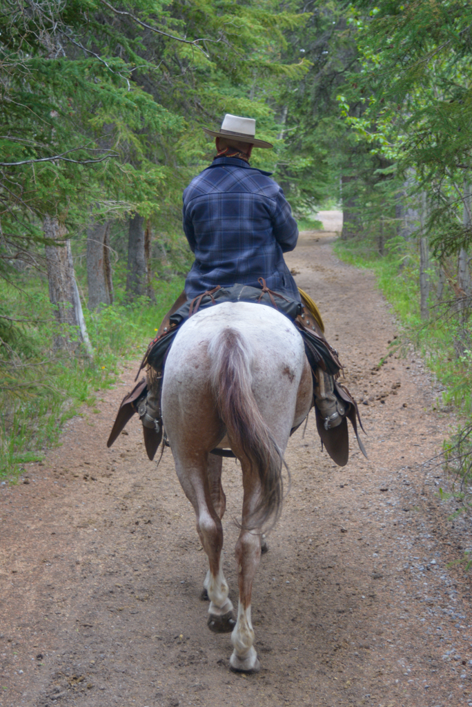 banff-trail-riders-rsz-13