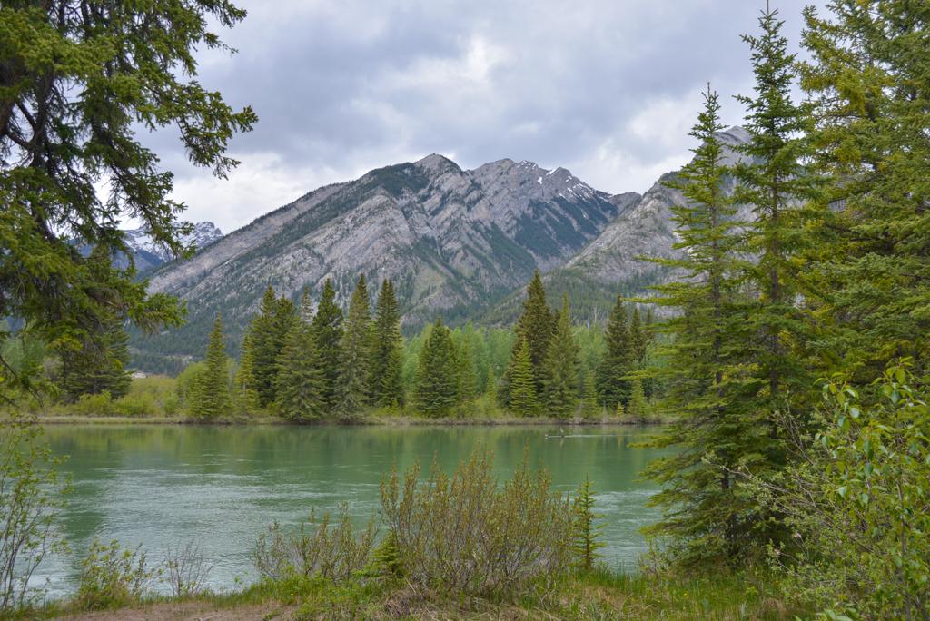 banff-trail-riders-rsz-14