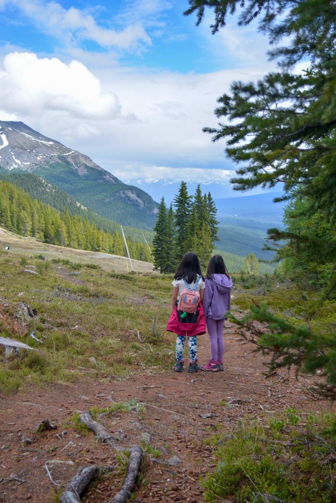 kicing-horse-viewpoint-lake-louise-summer-sightseeing-gondola-30