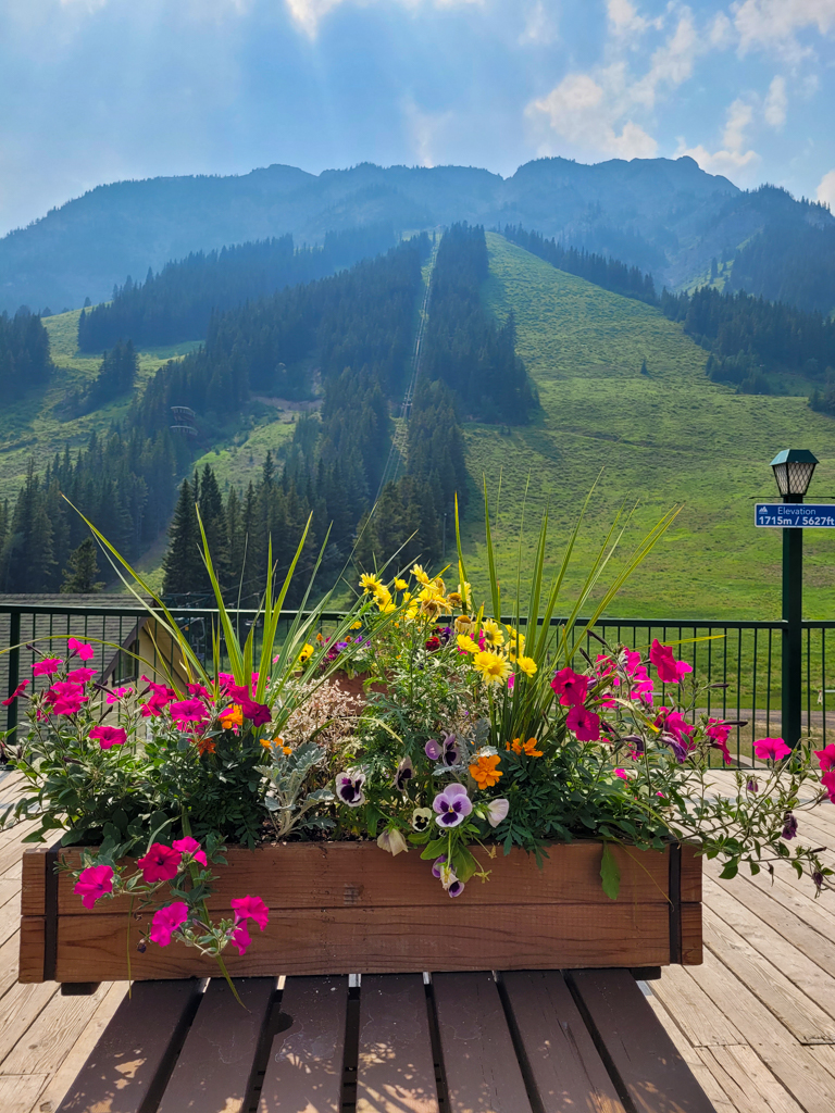 mount-norquay-sightseeing-chairlift-banff-11