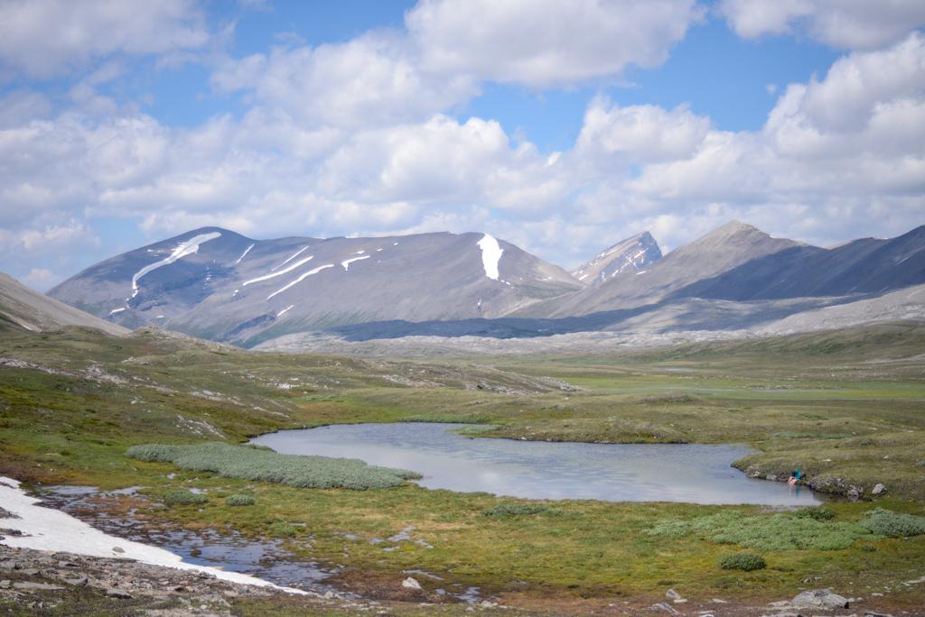 wilcox-pass-jasper-national-park-11