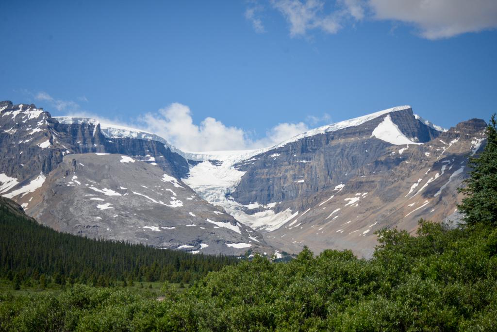 wilcox-pass-jasper-national-park-20