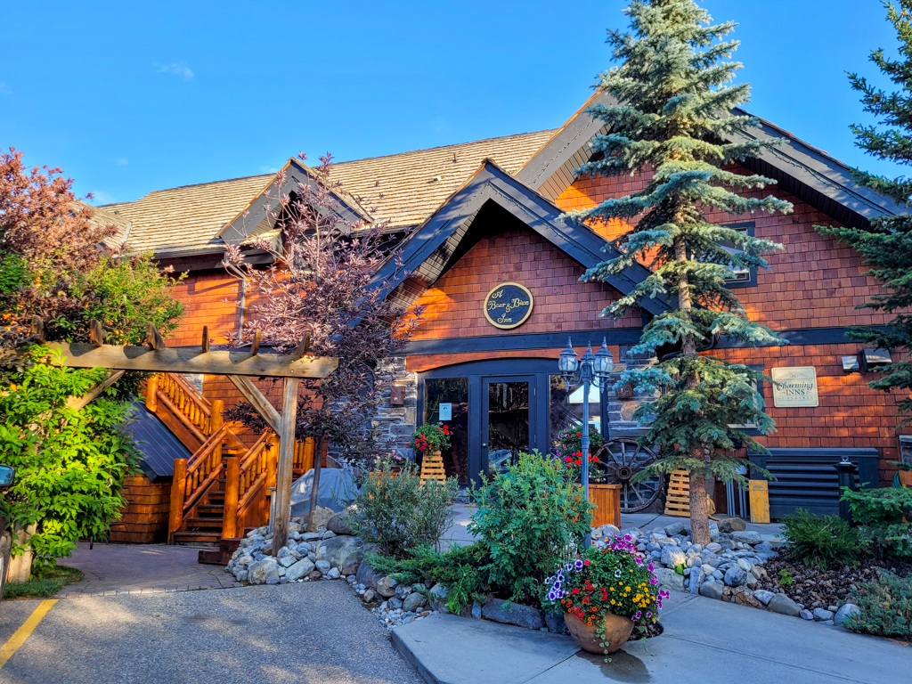 a-bear-and-bison-inn-canmore