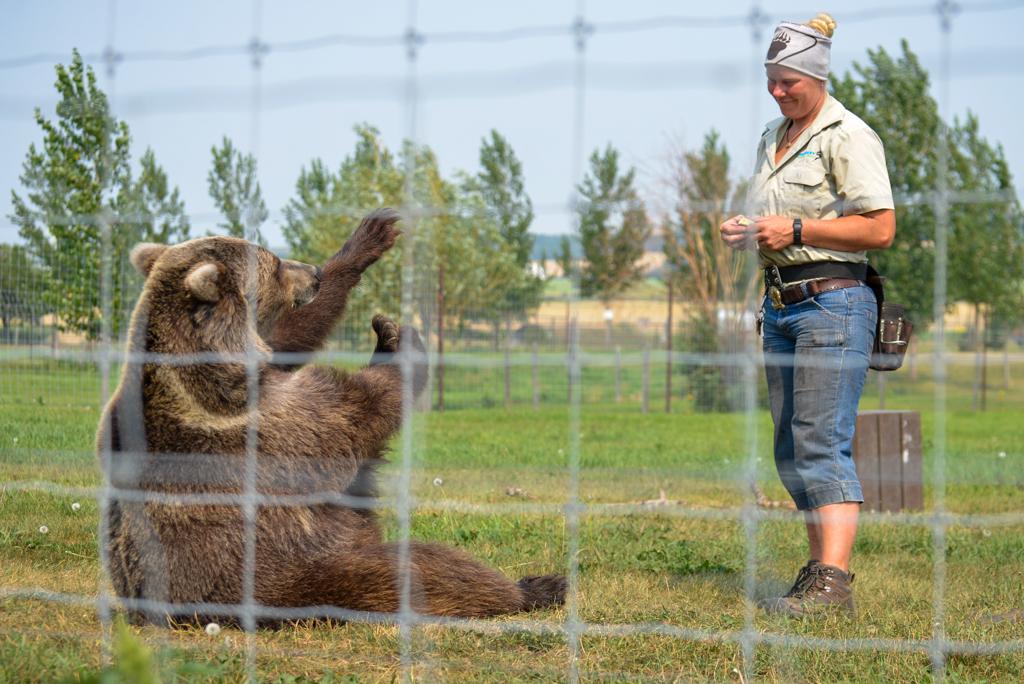 discovery-wildlife-park-innisfail-rsz-13