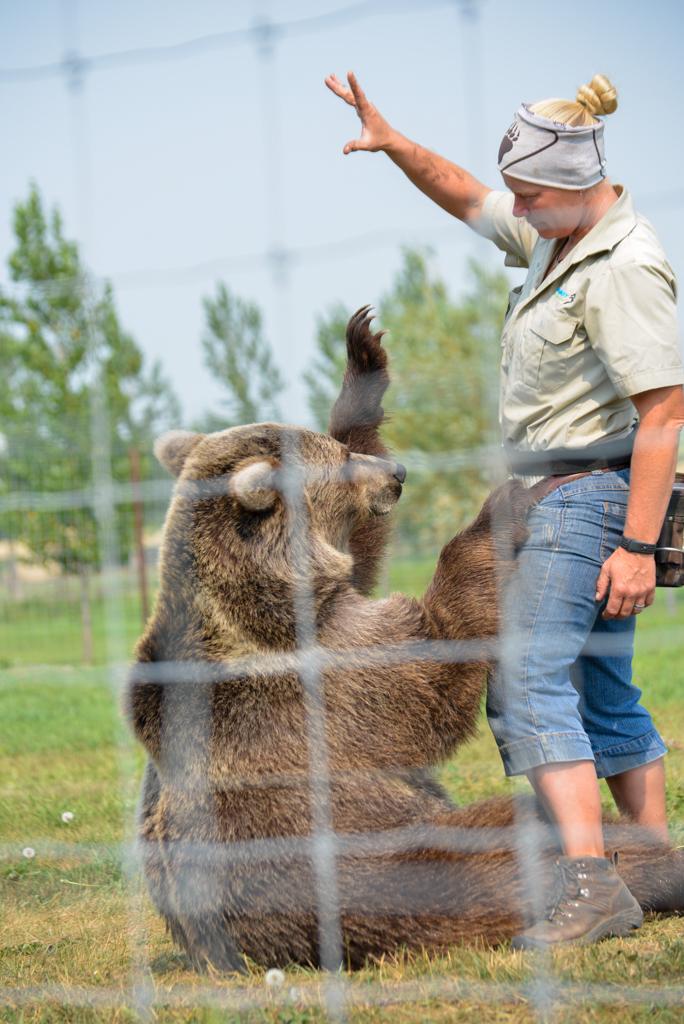 discovery-wildlife-park-innisfail-rsz-16