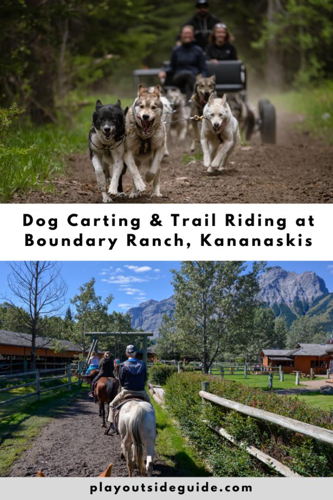 Summer Dog Carting and Trail Riding at Boundary Ranch, Kananaskis