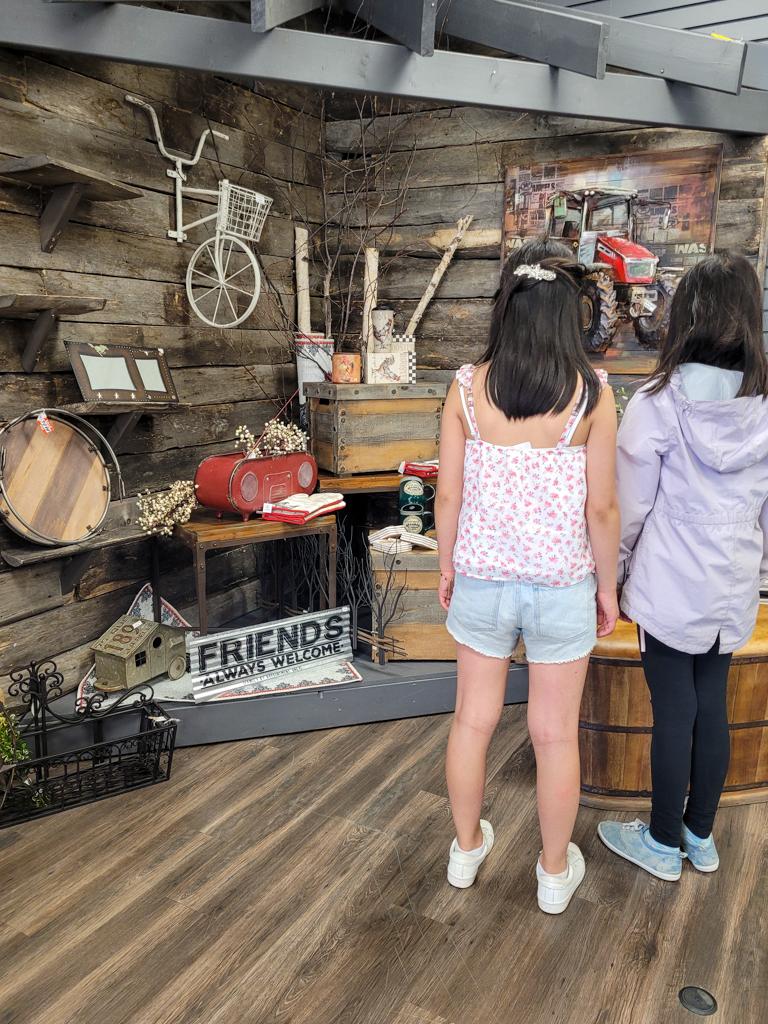 toys-and-treasures-wainwright