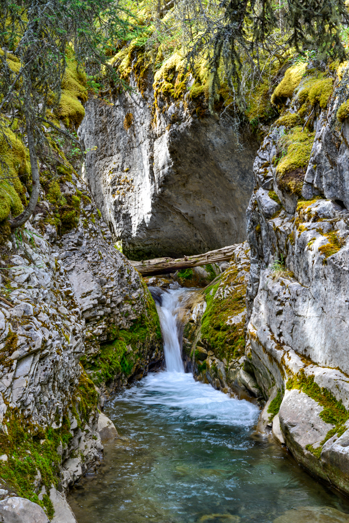 galatea-creek-kananaskis-13